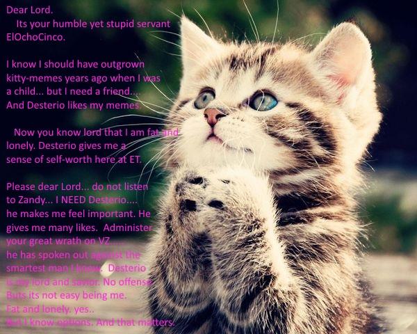 Anime-kittens-cats-praying-496315.jpg