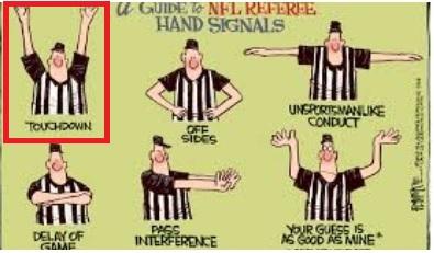 ref hand signals touchdown.jpg